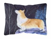 Carolines Treasures  SS8373PW1216 Starry Night Corgi Decorative   Canvas Fabric
