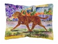 Carolines Treasures  SS8435PW1216 Chesapeake Bay Retriever Decorative   Canvas F