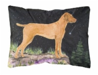 Carolines Treasures  SS8478PW1216 Starry Night Vizsla Decorative   Canvas Fabric