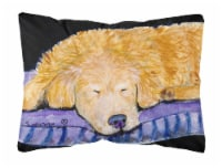 Carolines Treasures  SS8909PW1216 Golden Retriever Decorative   Canvas Fabric Pi