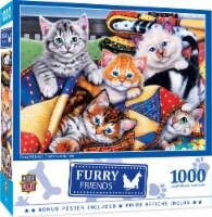 MasterPieces Furry Friends Puzzles Collection - Cozy Kittens 1000 Piece Jigsaw Puzzle - 1 unit