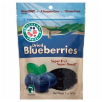 Graceland Fruit Dried Blueberries