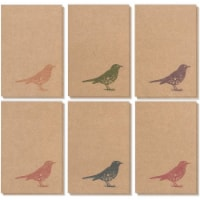 36-Pack All Occasion Greeting Card Notecard w/Envelopes Rustic Bird Design 4 x6 - PACK