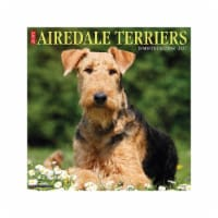 Just Airedale Terriers 2022 Wall Calendar (Dog Breed) - 1