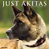 Just Akitas 2022 Wall Calendar (Dog Breed) - 1