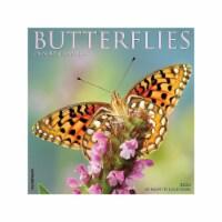 Butterflies 2022 Wall Calendar - 1