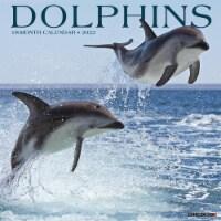 Dolphins 2022 Wall Calendar - 1