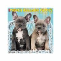 Just French Bulldog Puppies 2022 Wall Calendar, (Dog Breed) - 1