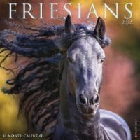 Friesians 2022 Wall Calendar Horses) - 1