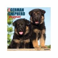 Just German Shepherd Puppies 2022 Wall Calendar (Dog Breed) - 1