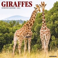 Giraffes 2022 Wall Calendar - 1