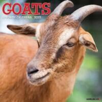 Goats 2022 Wall Calendar - 1