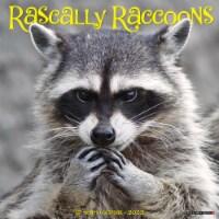 Rascally Raccoons 2022 Wall Calendar - 1