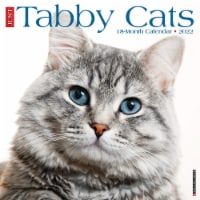 Just Tabby Cats 2022 Wall Calendar (Cat Breed) - 1