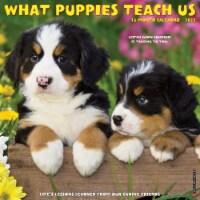 What Puppies Teach Us 2022 Wall Calendar - 1