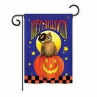 Breeze Decor BD-HO-G-112069-IP-BO-DS02-US Owl Sitting on Jack-O-Lantern Fall - Seasonal Hallo - 1