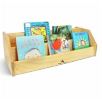 Infant-Toddler Book Display - 1