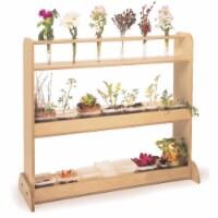 Classroom Nature Shelf - 1