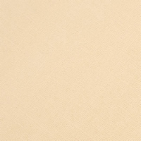 """Core'dinations Core Foundations Cardstock 12""""X12""""-Frappuccino - 1"""