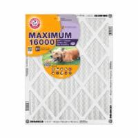 Arm and Hammer Maximum 16000 Allergen Furnace Filter - 20 x 30 x 1