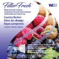 WEB Filter Fresh Country Berries Air Filter Freshener