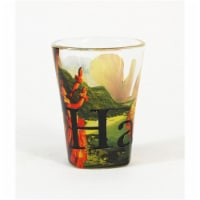 Americaware SGHAW01 Hawaii Full Color  Etched  Shot Glass
