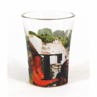Americaware SGTXS02 Texas Full Color Etched  Shot Glass - 1