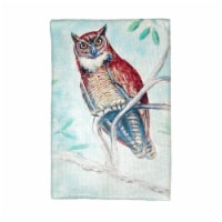 Betsy Drake KT732 Owl in Teal Kitchen Towel - 1