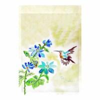 Betsy Drake FL1009G 28 x 40 in. Aqua Hummingbird Flag