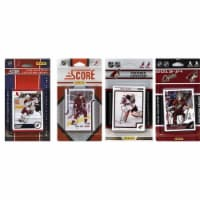 CandICollectables COYOTES313TS NHL Phoenix Coyotes 3 Different Licensed Trading Card Team Set