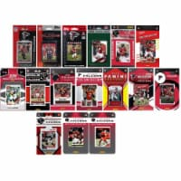 C&I Collectables FALCONS1519TS NFL Atlanta Falcons 15 Different Licensed Trading Card Team Se