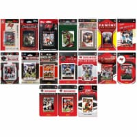 C&I Collectables BUCS1719TS NHL Tampa Bay Buccaneers 17 Different Licensed Trading Card Team