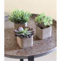 Set Of 3 Small Artificial Succulents In Square Pots All Approx. 3  X 3  X 6 T - 1