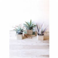 Set Of 3 Large Artificial Succulents In Square Pots All Approx. 4.5  X 4.5  X 11 T - 1