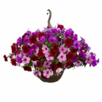 Premium Flowering Hanging Baskets
