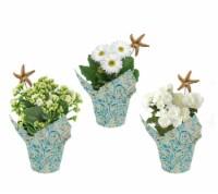 White Flowers in Seaside Wrap - Assorted