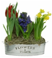 Flowers & Plants Oval Tin Potted Plants