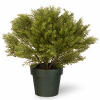 National Tree 20 Inch Global Juniper Plant Artificial Tree w/ Green Growers Pot - 1 Piece