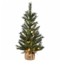 3 ft. Frosted Ontario Pine Tree with Battery Operated Lights - 1