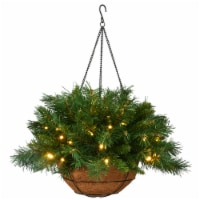 National Tree TF-300-20HB-1 Tiffany Fir Hanging Basket With Warm White Led Battery, 20 in.