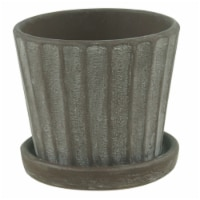Border Concepts Mini Standard Pot with Attached Saucer - Assorted