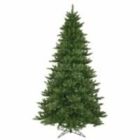 12' x 80  Camdon Fir Tree 5128 Tips - 1