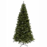 5.5' x 36  Malvern Mixed Pine 565T - 1