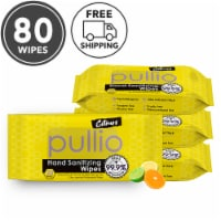 (4PK) pullio - Citrus Antibacterial Hypoallergenic Hand Sanitizer Wipes - 20ct, 80 Wipes