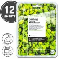 FARMSKIN 12 Sheets Soothing Green Tea Facial Sheet Masks (Superfood)