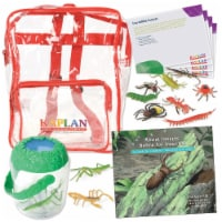 Kaplan Early Learning Back to Back Learning Kit - Incredible Insects - 1