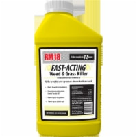 Ragan & Massey 233887 2.5 gal Concentrate 18 Percent Grass & Weed Killer - 1
