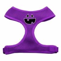 Pumpkin Face Design Soft Mesh Harnesses Purple Large - 1