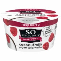 SO Delicious Dairy-Free Raspberry Coconutmilk Yogurt Alternative