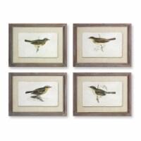 Framed Bird Print (Set of 4) 23.5  x 17.75 H Wood/Glass - 1